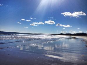 Beach Meadows in Nova Scotia